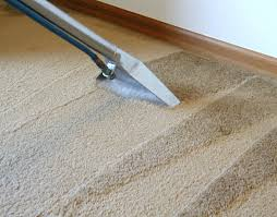 Why regularly clean your carpets
