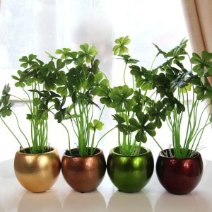 shipping houseplants