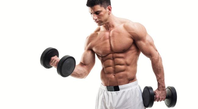 bodybuilding status