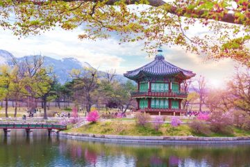 Korea package tour