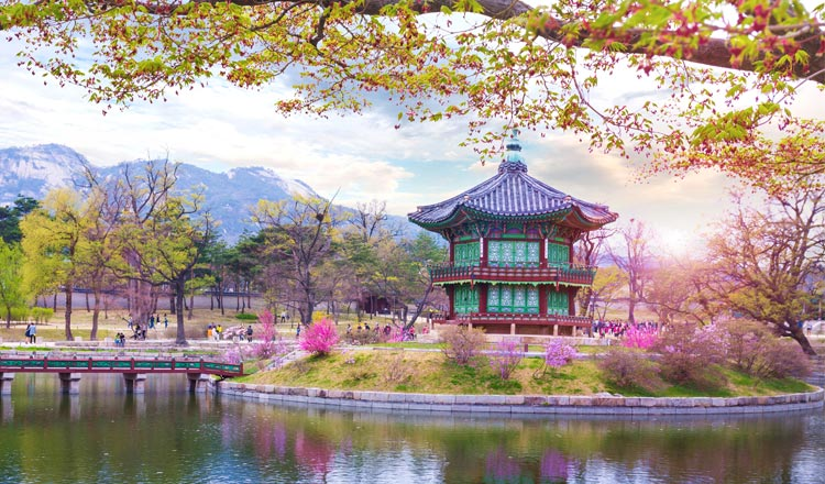 Korea package tour