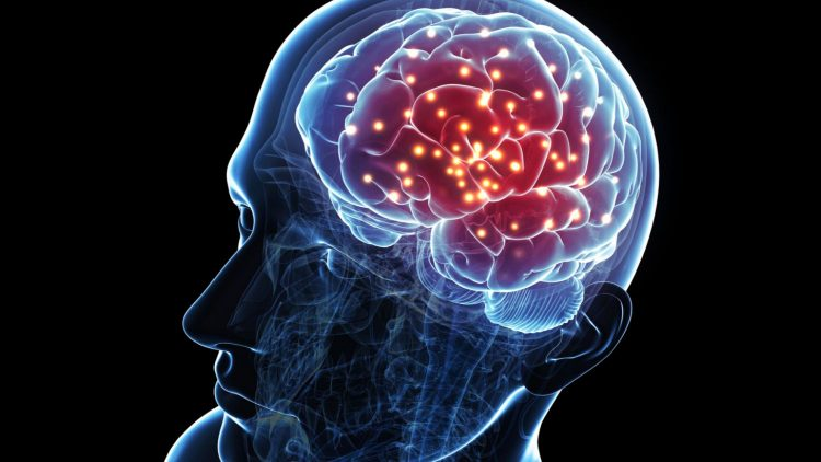 Interesting facts about pineal gland